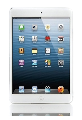 An Apple iPad Mini!